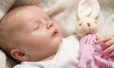 Le doudou de bébé