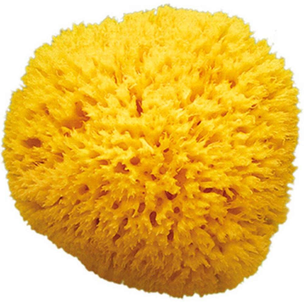 Eponge naturelle Honeycomb Taille 12 BEIGE OkBaby