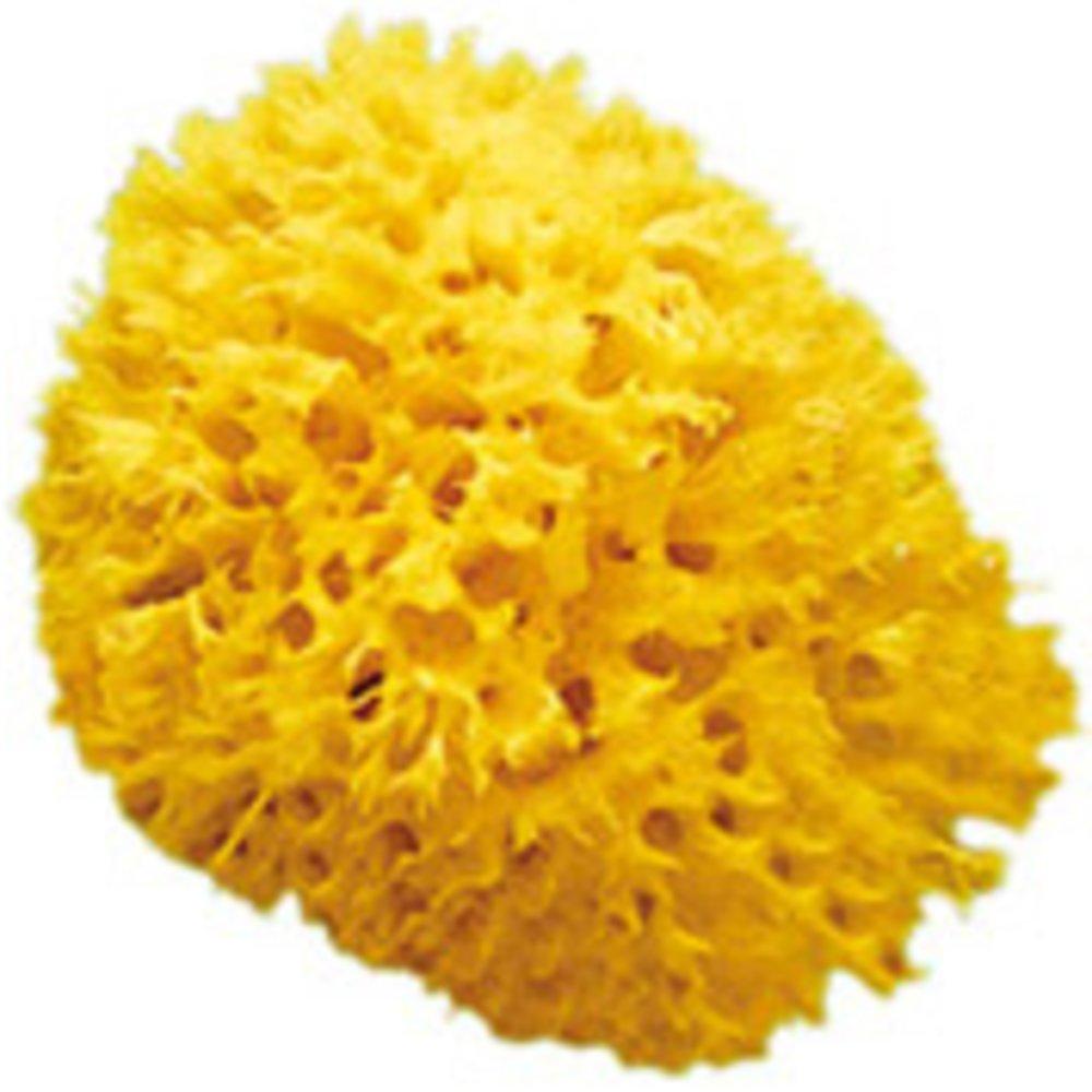 Eponge naturelle Honeycomb Taille 14 BEIGE OkBaby